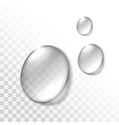 water drops set isolated on transparent background vector image
