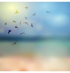 birds silhouette on sunny sky and beach vector image vector image