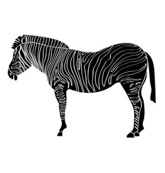 isolated zebra silhouette vector image vector image
