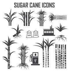sugar cane icons vector image vector image