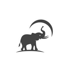 elephant logo template icon vector image vector image