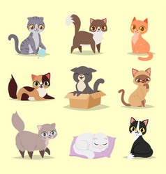 cute cats kitty pet adorable character different vector image