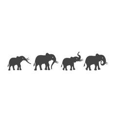 Elephant logo template icon vector