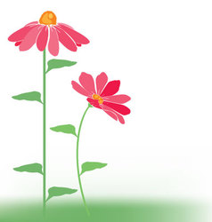 flowers pink vector image