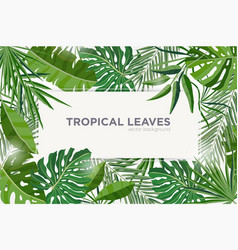 Horizontal background with green tropical leaves vector