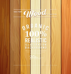Wood collections realistic texture design vector image