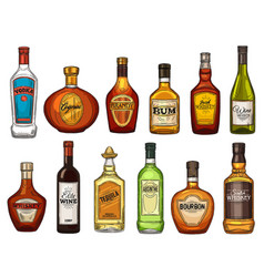 Alcohol drink isolated bottles vector