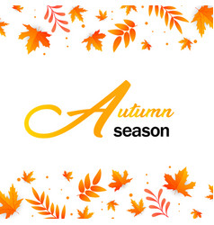 autumn season autumn leaves background imag vector image