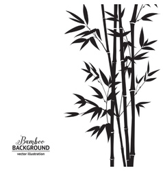 Bamboo bush vector