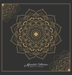 Henna Mandala tattoo design vector
