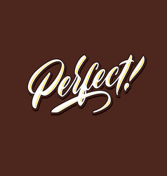 perfect hand lettering typography compliment words vector image