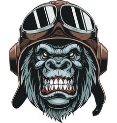 monkey in helmet pilot vector image