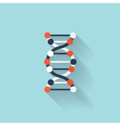 Flat dna icon Chemical formula symbol Health vector image