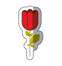 red rose with square petals icon vector image vector image