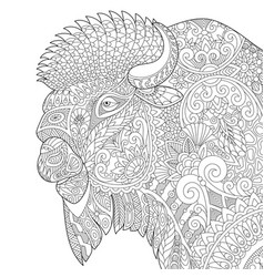 Buffalo bull bison adult coloring page vector