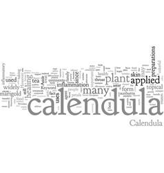 Calendula vector