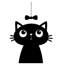 cat head face looking at bow hanging on thread vector image