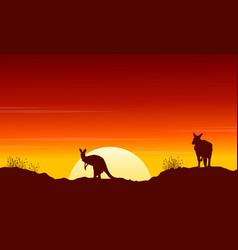 collection kangaroo at sunset silhouette scenery vector image vector image