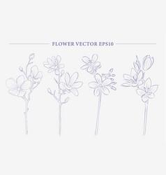 Creative flower collection vector