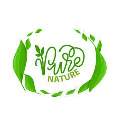 Frame green leaves pure nature lettering logo vector