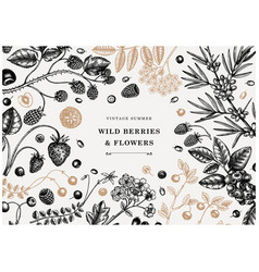 Hand drawn berry vintage design berries and vector