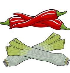 leek and red pepper vector image