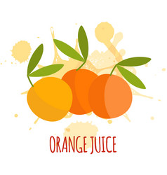 orange juice package design vector image