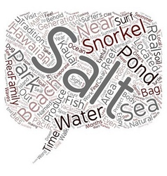 Snorkel In Salt Pond text background wordcloud vector