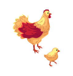 Two funny cartoon chicken hen and baby chick vector