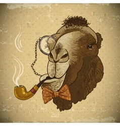 Vintage Card Hipster Animal Camel with pipe vector