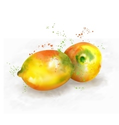 watercolor lemon vector image
