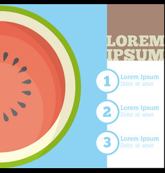 watermelon fruit infrographic design vector image