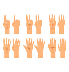 hand counting signs vector image