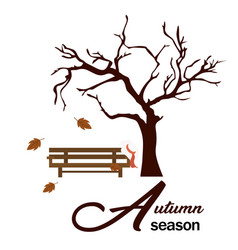 autumn season garden wood chair and tree backgroun vector image