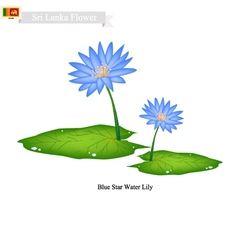 Blue Star Water Lily National Flower of Sri Lanka vector