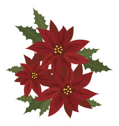 flower poinsettia cartoon christmas flower vector image