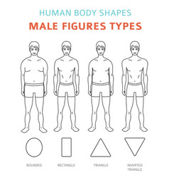 human body shapes male figures types set vector image