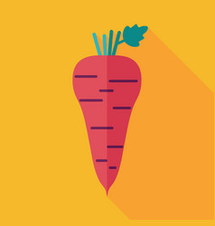 Parsnip root flat icon vegetable vector