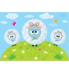 cartoon lambs vector image