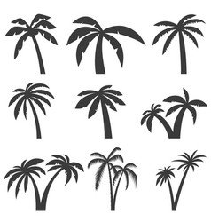 Set of palm tree icons isolated on white vector