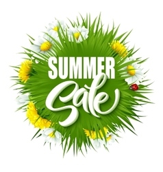 Summer sale lettering background with summer vector image