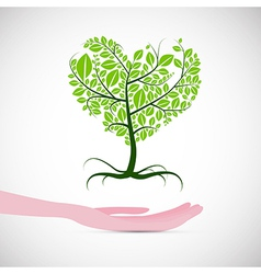 Heart Shaped Abstract Green Tree in Human Hand vector image