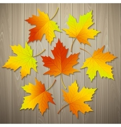Autumn background with leaf and wood texture vector image