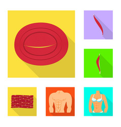 design of muscle and cells sign collection vector image
