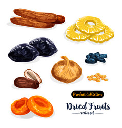 Dried fruit natural sweets icon set food design vector