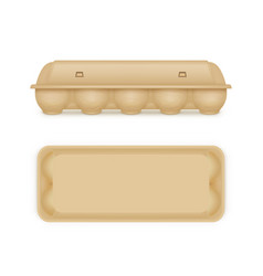 Egg package mock up blank food tray box container vector