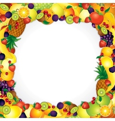 Frame from Fresh Fruits Image with Free Space vector