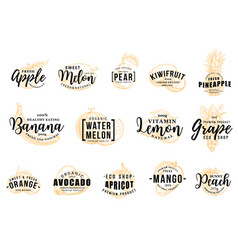 fruits silhouettes icons with letterings isolated vector image