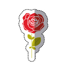 red rose with petals and leaves icon vector image