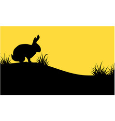 silhouette of bunny on orange backgrounds vector image